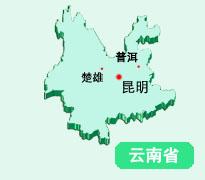 云南省实体店