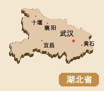 湖北省实体店